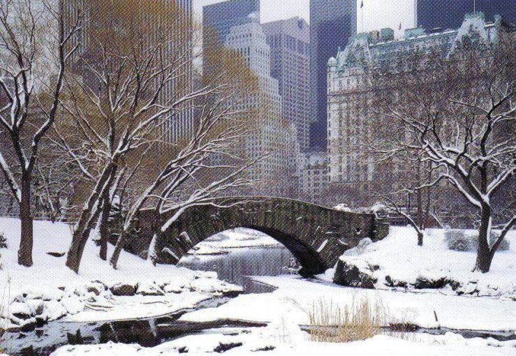 Central Park 03