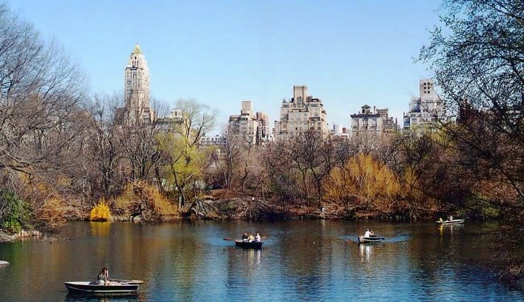 Central Park 11