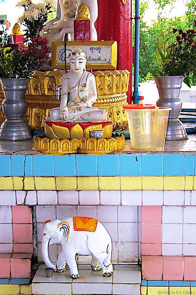 Chauk Htat Gyi-pagode (39)