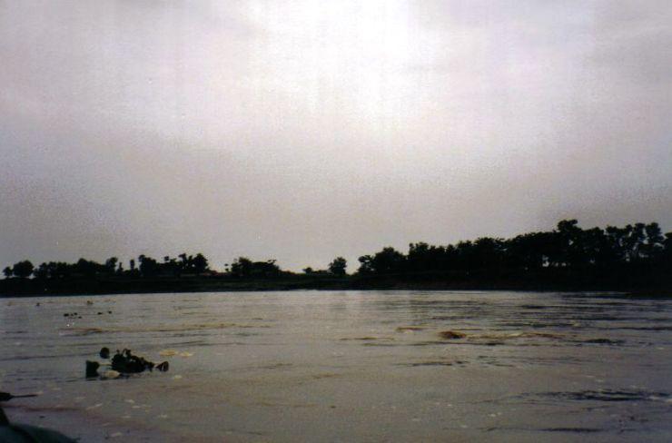 Chitwan 05