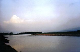 Chitwan 06
