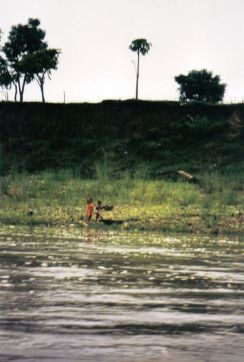 Chitwan 10