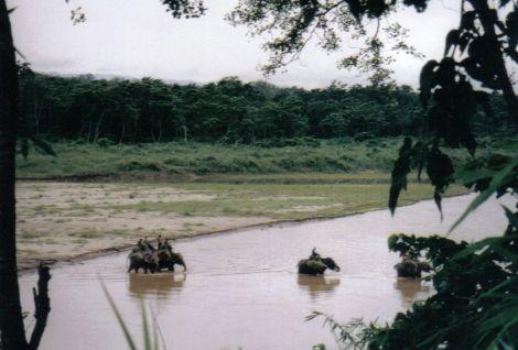 Chitwan 30