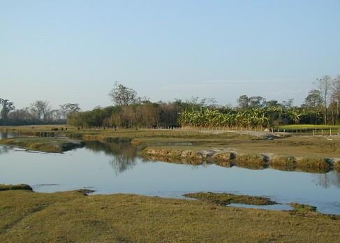 Chitwan 38