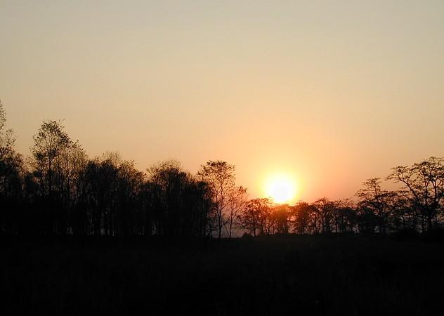 Chitwan 44