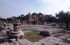 Forum Romanum 08