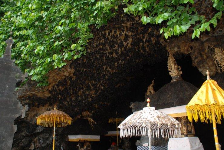 Goa Lawah 08