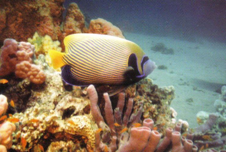 Hurghada 02