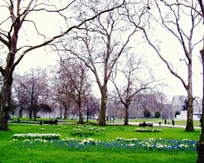 Hyde Park 3