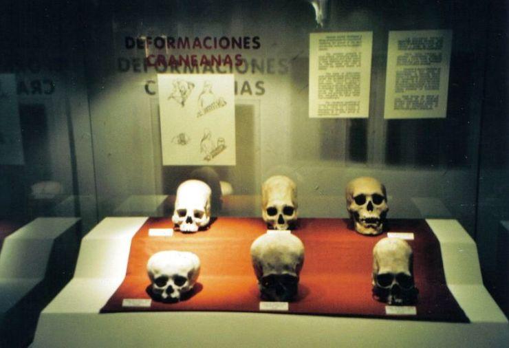 Inca Museum 04