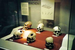 Inca Museum 06