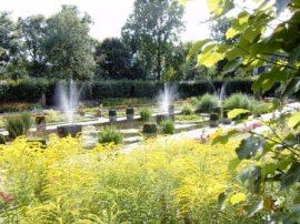 Kensington Gardens 5