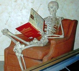 Lezend skelet