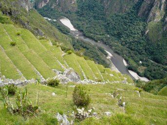 Macchu Picchu 49
