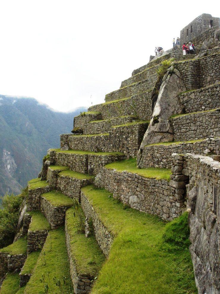 Macchu Picchu 50