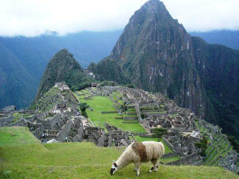 Macchu Picchu 75