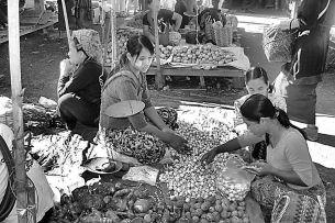 Markt (11)