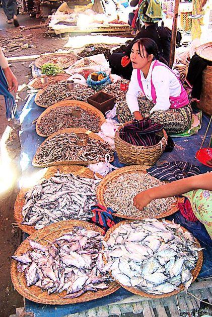 Markt (7)
