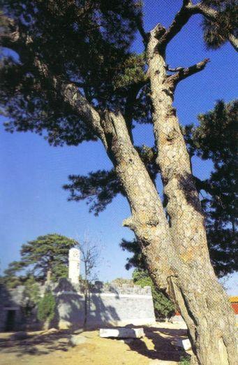 Minggraven 09 (Siling, tombe van keizer Chong Zhen)