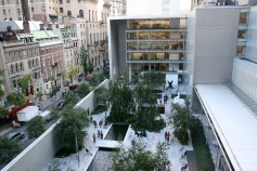 MOMA yard