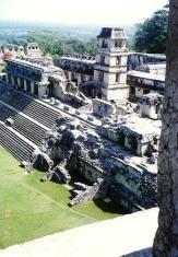 Palenque 17