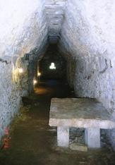 Palenque 18