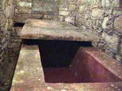 Palenque 31