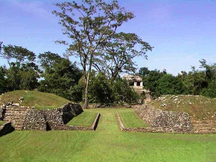 Palenque 42