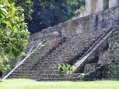 Palenque 45