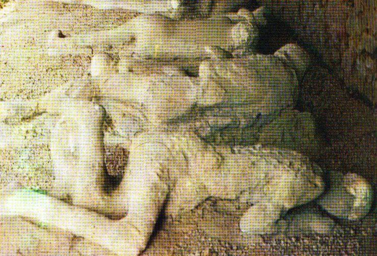 Pompei 27