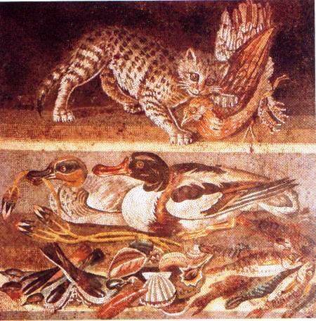 Pompei 31
