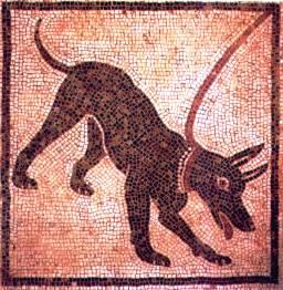 Pompei 32
