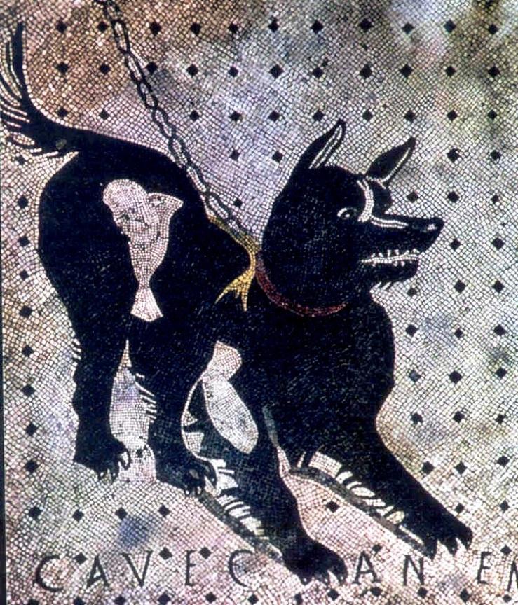 Pompei 47