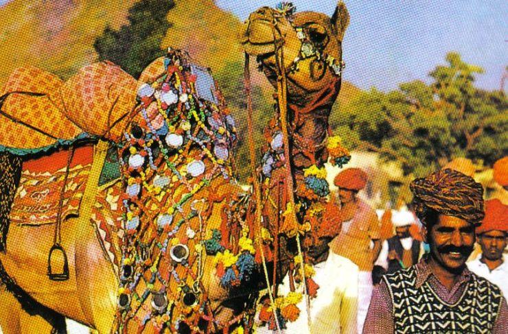 Pushkar 26