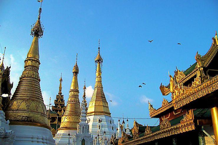 Shwedagon-pagode (6)