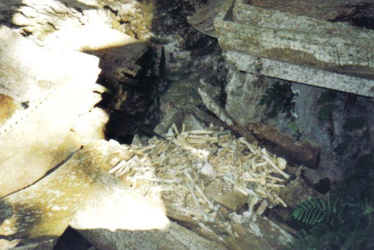 Tana Toraja 16 (hangende graven)