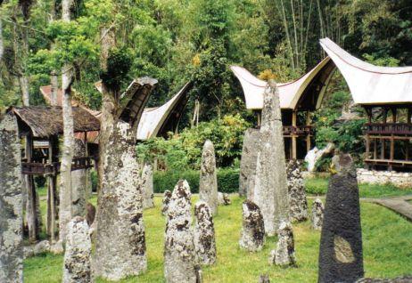 Tana Toraja 20 (menhirs ter ere van overledenen)