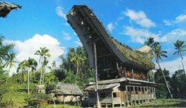 Tana Toraja 21 (traditioneel dorp)
