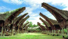 Tana Toraja 22 (traditioneel dorp)