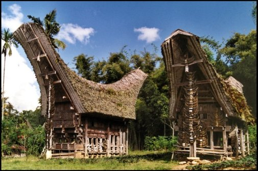 Tana Toraja 25 (traditioneel dorp)