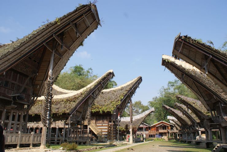 Tana Toraja 26 (traditioneel dorp)