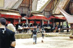 Tana Toraja 31 (begrafenisceremonie)