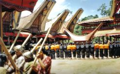 Tana Toraja 34 (begrafenisceremonie)