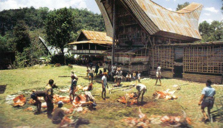 Tana Toraja 46 (begrafenisceremonie)