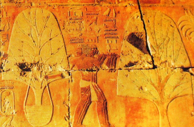 Tempel van Hatsjepsoet 18