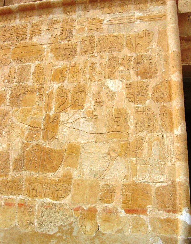 Tempel van Hatsjepsoet 22