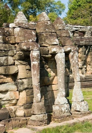 Terras van de olifanten 06