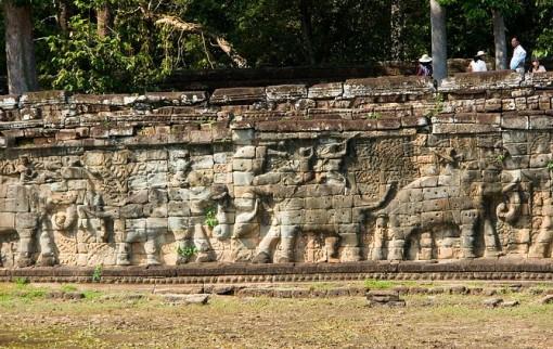 Terras van de olifanten 07