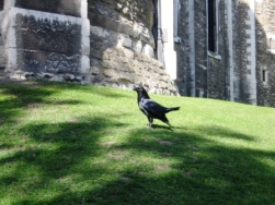 Tower of London 42