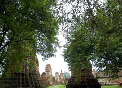 Wat Mahathat 03